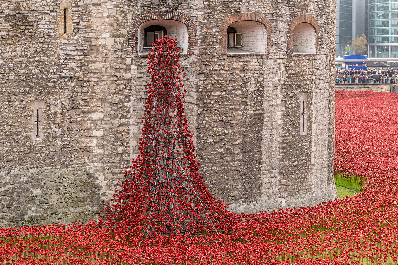 The 'Weeping Window' with poppies pouring from a window of the Tower