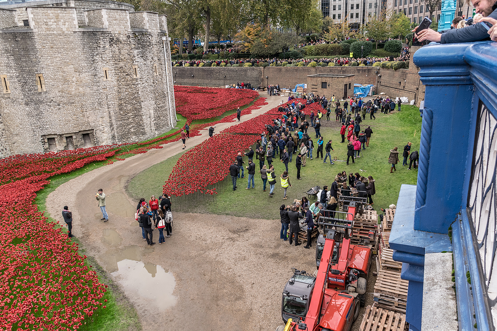 Final poppies being assembled and placed in the installation