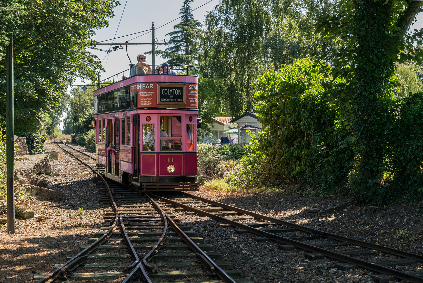 Car 11 - the so-called 'pink tram' - pulling into Colyford halt