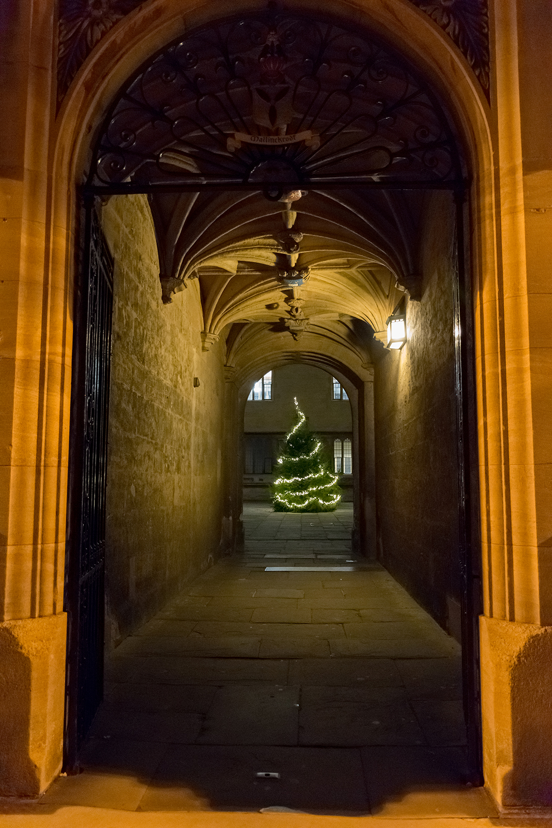 Christmas at the Bodleian Library