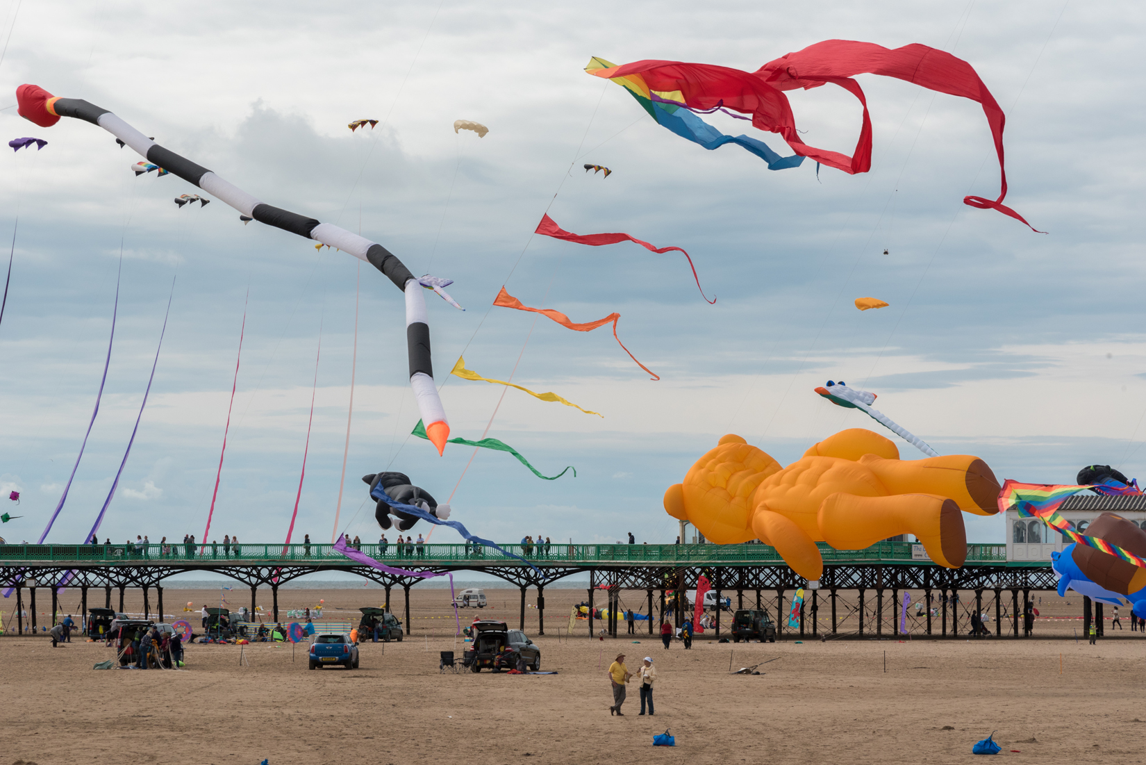 Some of the collection of kites in flight.